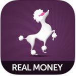 Posh Bingo App